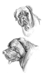 sketchbook page - graphite